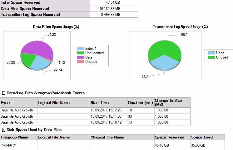 """Отчет """"Занято места на диске"""" (Disk Usage)"""